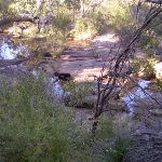 Looking down at the creek from the track (36882)