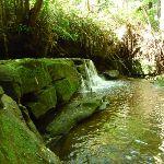 Pleasent cascade on Robinson Creek (371413)
