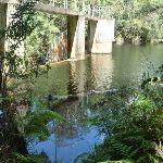 Lower Mooney Mooney Dam (372664)