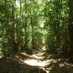 Wide steep section north of Osburn Creek (373033)
