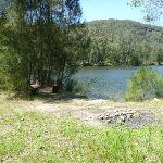 Capsite near the confluence of Floods and Mooney Mooney Creeks (373501)