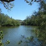 Looking downstream along Mooney Mooney Creek to the old Pacific Hwy bridge (373753)