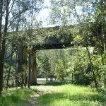 Old Pacific Hwy Bridge over Mooney Mooney Creek (373906)