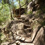 Rocky section with steps beside Calna Creek  (377747)