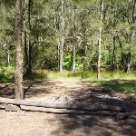 Calna Creek Northern campsite (377780)
