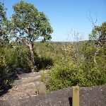 Track west of Woy Woy landfill (379643)