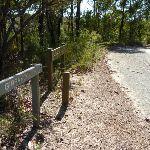 Walking along the Hawkesbury trail (380831)