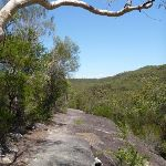 Walking along a rock platform west of Myron Brook (382313)