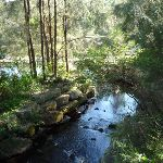 Fish ladder on the Lane Cove River (383588)