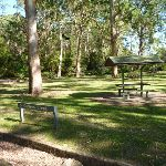Carters Creek Picnic Area (384353)