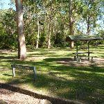 Carters Creek Picnic Area (384353)
