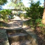 Steps near the Lane Cove River tourist park (384899)