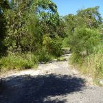 Trail behind the Binary/Goodman building (385481)