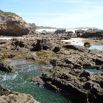 Rock pools at Caves Beach Caves (387374)