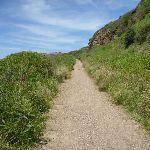Uphill track near Spoons Rocks  (387764)