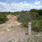 Rocky track with timber track marker in the Wallarah Pennisula  (388058)