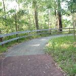 Shared cycle/walkway Foreshore Track (390005)