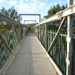 Belmont Lagoon foot bridge over the creek (390146)