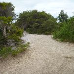 End of trail near the Awabakal Viewpoint (391805)