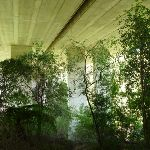 Walking under De Burghs Bridge (392369)