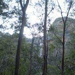 The cliffs surrounding the servicetrail (39523)