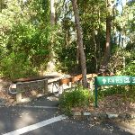 Wildlife Exhibit boardwalk entrance at Carnley Ave Reserve in Blackbutt Reserve (399358)