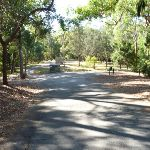 The end of Lookout Road in the Blackbutt Reserve (399883)