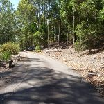 Wide trail at Richley Reserve in Blackbutt Reserve (401656)
