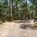 Sealed trail with metal post near Richley Reserve in Blackbutt Reserve (401908)