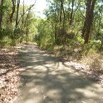 Sealed Trail in Green Point Reserve (403318)
