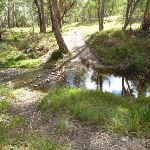 Six Foot Track crossing Mitchells Creek (412247)