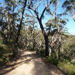 Walking along Black Range (416183)