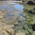 rock pools (43651)