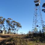 Bushwalkers Hill Fire Tower (48932)