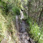 Track down to Victoria Falls (50102)