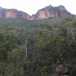 Cliffs above Grose River (50285)