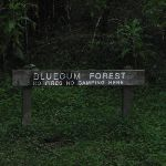Blue Gum Forest sign (50576)
