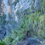 Track past Govetts Leap falls (51122)