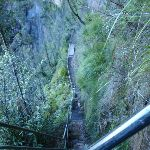 Track down to Govetts Leap falls (51137)
