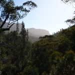 Looking down the Grose Valley (52067)