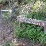Signage on Grose River Track (52331)