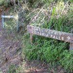 Signage on Grose River Track (52331)