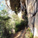 Piles Creek track (52946)