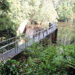 Mooney Dam (53411)