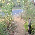Int of Great North Walk and Patonga Drive (54374)