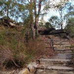 Steps to Warrah Trig Station (54386)
