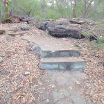 Path back up towards Warrah Trig Station (54398)