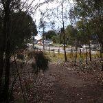 near Ryde Road (54755)