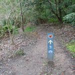 Signpost on track (54884)