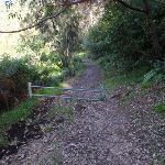 Gate to Ironbark Flats (54932)